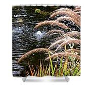 Fountain Grass Shower Curtain