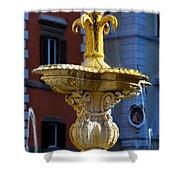 Fountain Piazza Farnese Shower Curtain