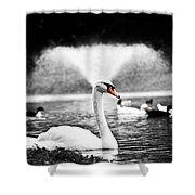 Fountain Swan Shower Curtain by Shane Holsclaw