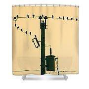 Four And Twenty Shower Curtain