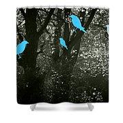Four Birds Shower Curtain