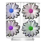 Four Daisy Hibrids Shower Curtain