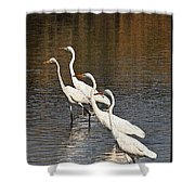 Four Egrets Fishing Shower Curtain
