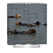 Four Friends Shower Curtain