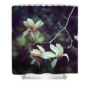 Four Magnolia Flower Shower Curtain
