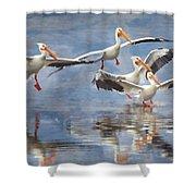 Four Pelican Landing Watercolor Effect Shower Curtain