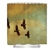 Four Ravens Flying Shower Curtain