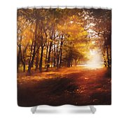 Four Seasons Autumn Impressions At Dawn Shower Curtain