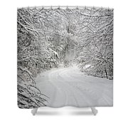 Four Wheel Winter Shower Curtain