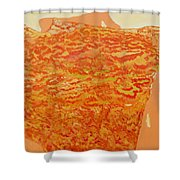 Fourth Creation Shower Curtain