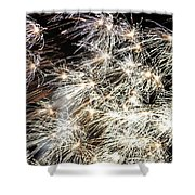 Fourth Of July Fireworks Shower Curtain by Kim Bemis