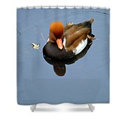 Fowl Ginger Shower Curtain