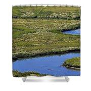 Fox Creek Marsh Shower Curtain