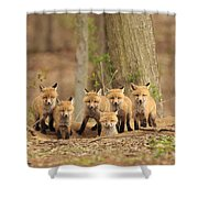 Fox Family Portrait Shower Curtain