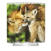 Fox One Shower Curtain