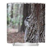 Fox Squirrel Vertical Shower Curtain