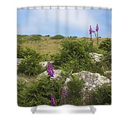Foxgloves And Cows Shower Curtain