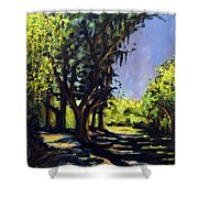 Foxgrapes And A Sandy Road Shower Curtain