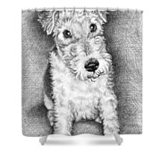 Foxterrier Shower Curtain