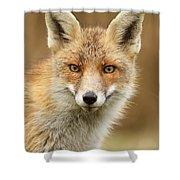 Foxy Face Shower Curtain