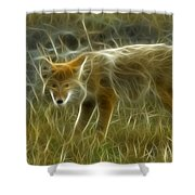 Foxy Loxy Shower Curtain