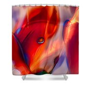 Foxylady Shower Curtain