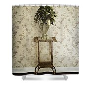 Foyer Living Shower Curtain