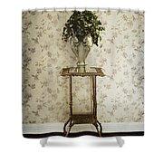 Foyer Living Shower Curtain by Margie Hurwich