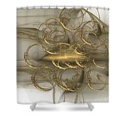 Fractal 077 Shower Curtain