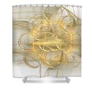 Fractal 078 Shower Curtain