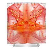 Fractal 102 Shower Curtain