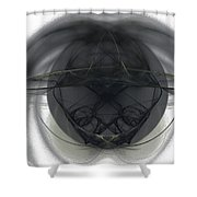 Fractal 103 Shower Curtain