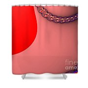 Fractal 12 Shower Curtain