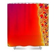 Fractal 14 Shower Curtain