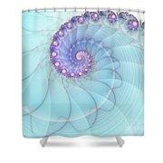 Fractal 17 Shower Curtain