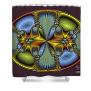 Fractal Art Egg Shower Curtain