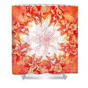 Fractal Carnation Shower Curtain