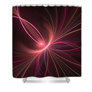 Fractal Dancing With The Light Shower Curtain