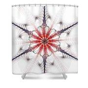 Fractal Flake Shower Curtain