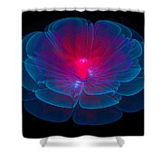 Fractal Flower Blue And Red Shower Curtain