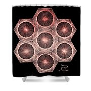 Fractal Fusion Hw Equals Mc Squared Shower Curtain by Jason Padgett