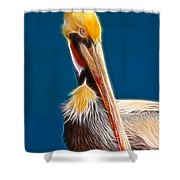 Fractal Pelican Shower Curtain