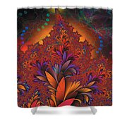 Fractal Space Shower Curtain