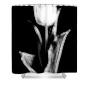 Fractal Tulip Shower Curtain