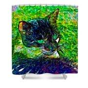 Fractalias Feline Shower Curtain