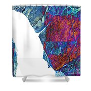 Fracture Section Xiii Shower Curtain