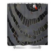Fractured Web Shower Curtain