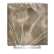 Fragile Shower Curtain