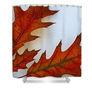 Fragile Transformation Shower Curtain