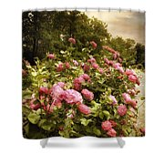 Fragrant Fields Shower Curtain